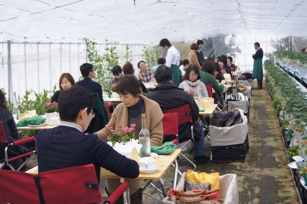 2014.1st asa cafe report